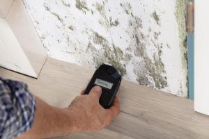 Sandestin Mold Testing