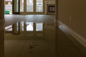 Santa Rosa Beach Water Damage Restoration